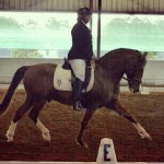 Iana-Dressage-ARM