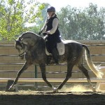 California Para  Equestrian Sets Sights on 2014 WEG